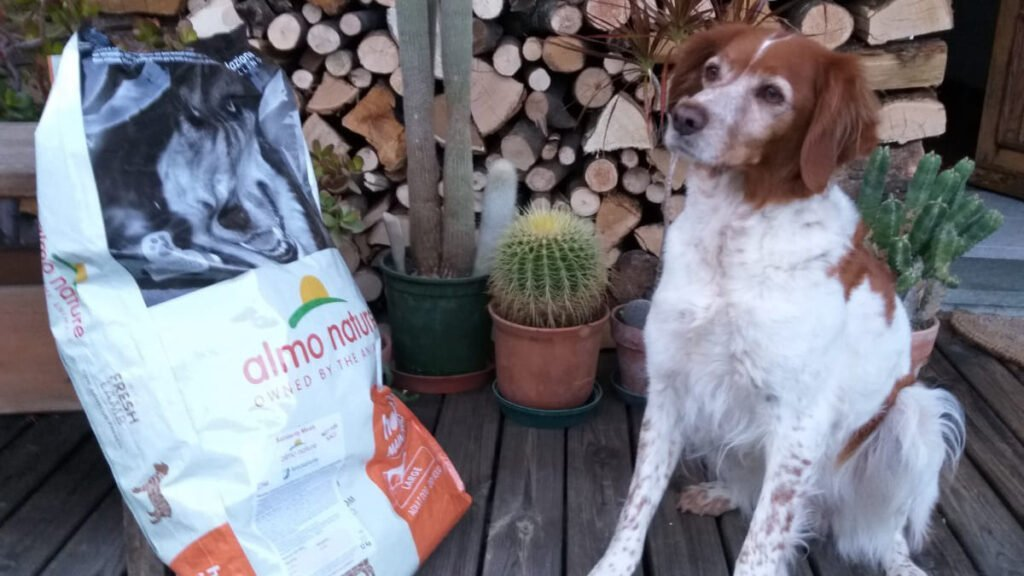 Special Food for Special Dogs - Life Wolfalps EU
