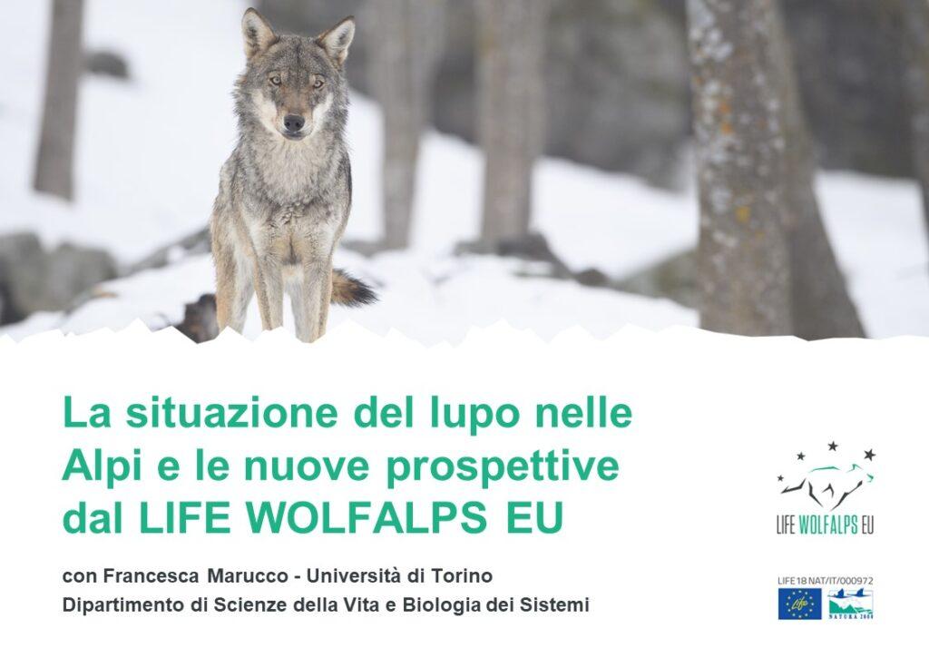 Le risposte alle vostre domande - Life Wolfalps EU