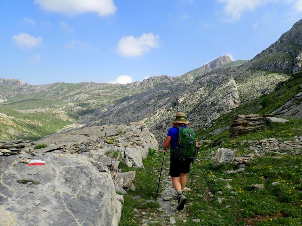 Ecoturismo e LWA EU: al via i trekking esperenziali - Life Wolfalps EU
