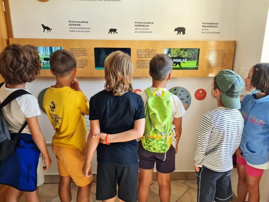 Des écoliers slovènes ont visité les forêts de Snežnik - Life Wolfalps EU