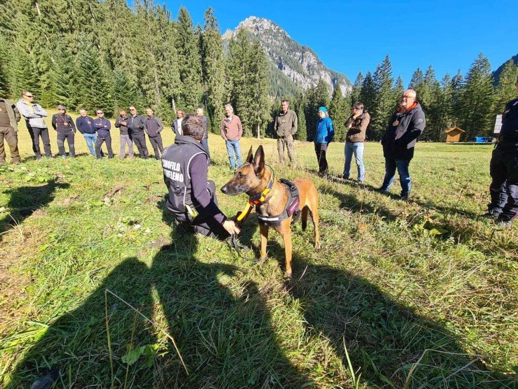 Lutte contre le braconnage et l'empoisonnement : un atelier pour le transfert des meilleures pratiques - Life Wolfalps EU